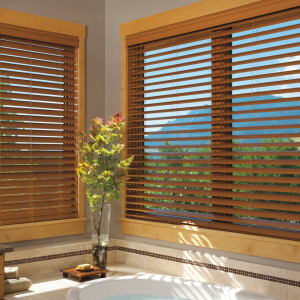 Window Blinds The Shade Company 44