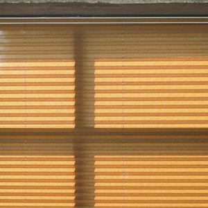 Pleated Window Shades